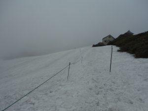 山頂付近の残雪、約400m