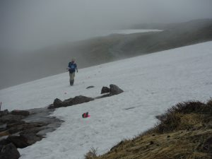 短い残雪には、石に赤いテープを巻いた目印