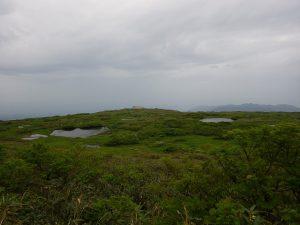 無量坂から見た弥陀ヶ原湿原