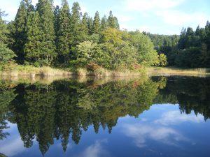 二夜の池周辺の紅葉