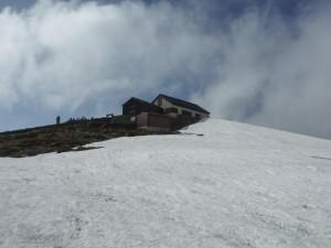 山頂直下の雪。